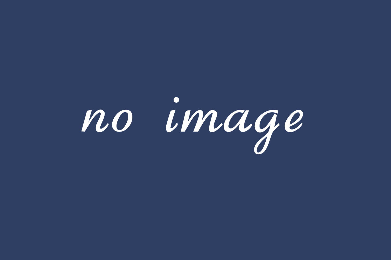 水納島 ウミガメのシルエット