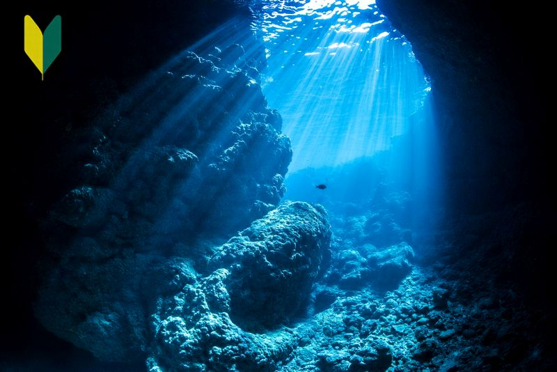 沖縄青の洞窟でダイビングライセンスを取得しよう