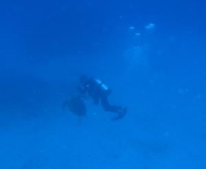 水納島で初めての・・・