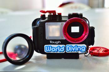 マクロ撮影 水中写真で生物や魚を上手に撮るコツ