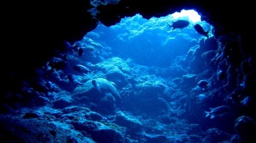 第2回 伊江島 洞窟探検ダイビングツアー