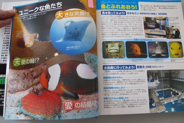 講談社の動く図鑑 MOVE魚
