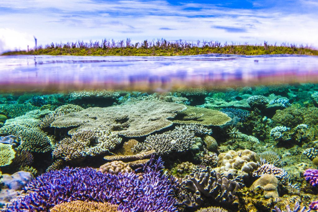 水納島の半水面と珊瑚礁