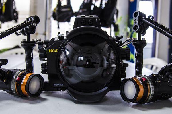 NIKON D810 SEA&SEA MDX-D810の水中撮影
