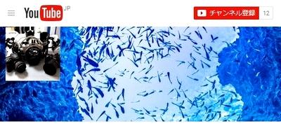 沖縄ダイビング動画