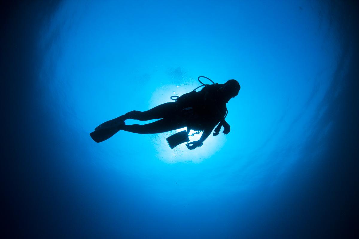 光に包まれるダイバーのシルエット