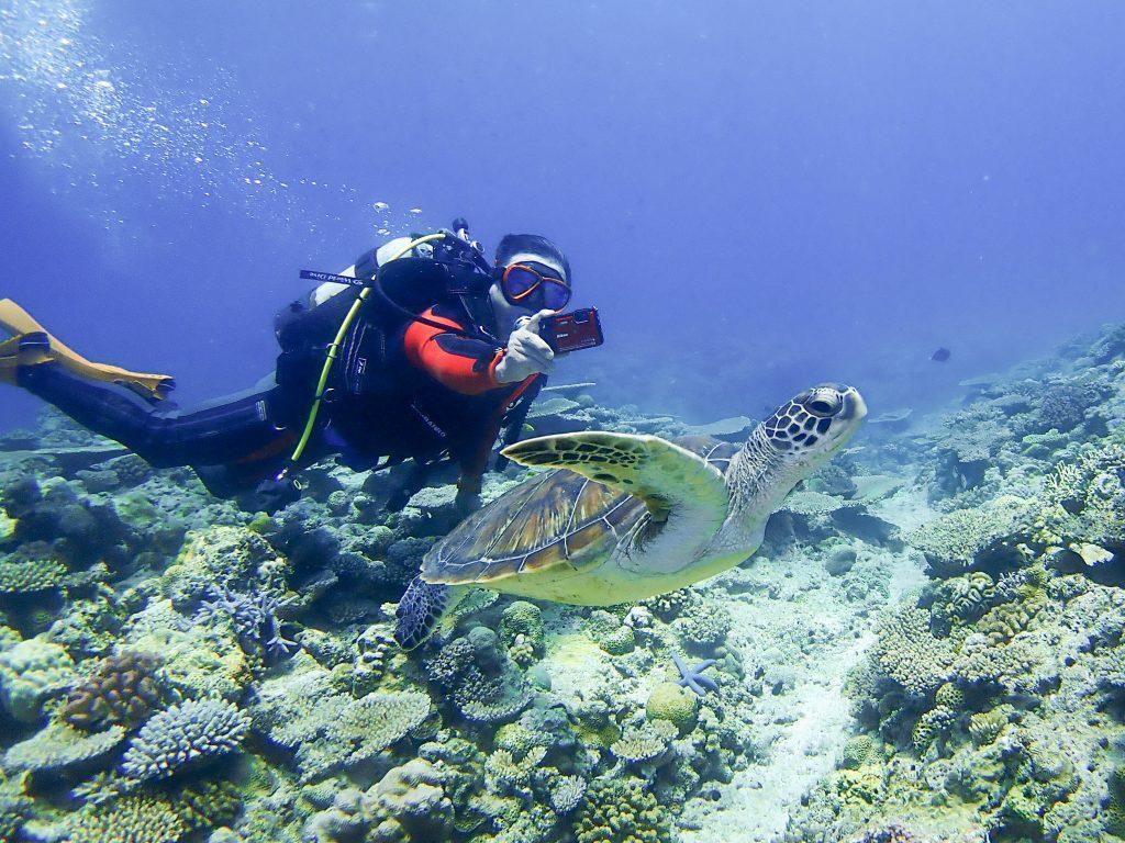 沖縄本島おすすめダイビングスポット 万座でサンゴダイビング