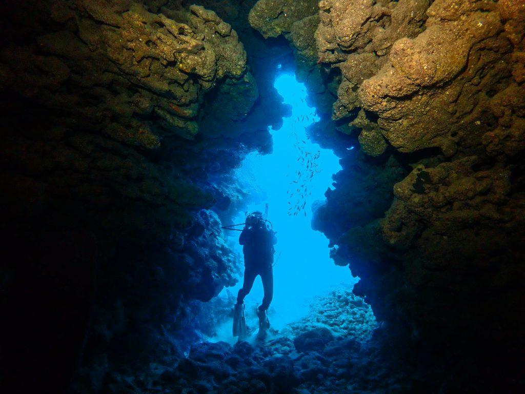 沖縄本島 ダイビング 未開の地 東海岸