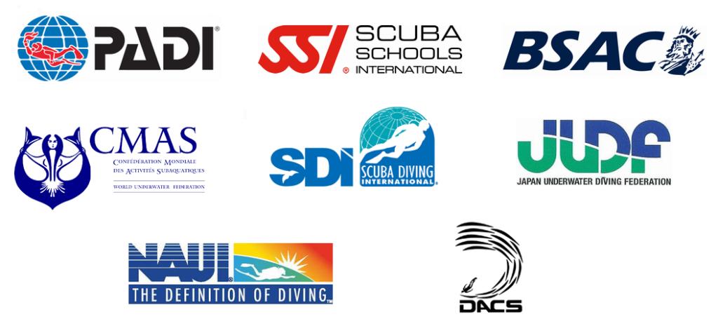 ダイビング指導団体の比較・徹底解説