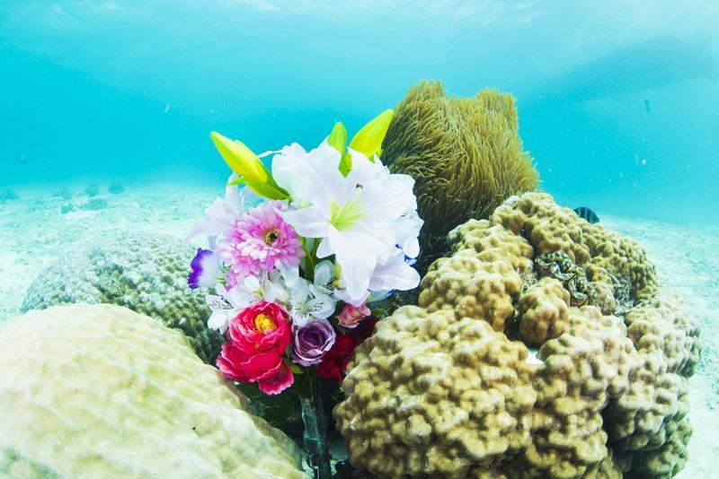 花束・水中プロポーズ
