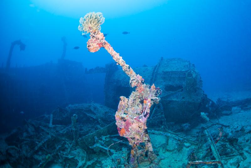 Mk.37方位盤と12.7mm機銃 沖縄の沈没船・エモンズ