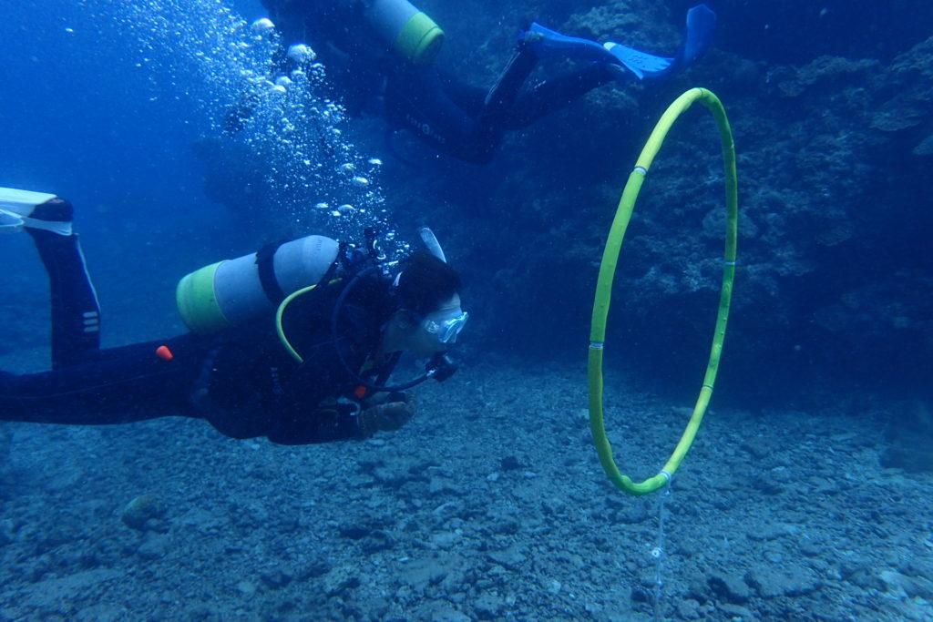 初めての沖縄の海でアドバンス講習(前編)