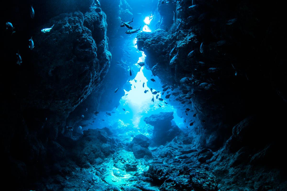 沖縄 冬 おすすめのダイビングスポット